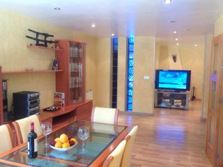 Trendy Room with Private Bathroom in Villa Cheops, - Elche vacation rentals