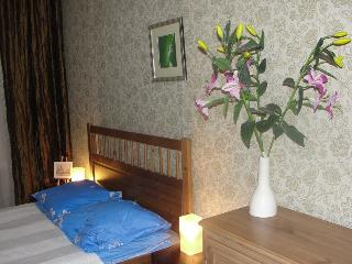 5 bdrm apartment, 10 min. fr. Nevsky ave, Wifi - Saint Petersburg vacation rentals