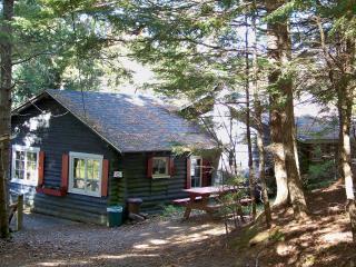 Cottage #6 - Dennysville vacation rentals