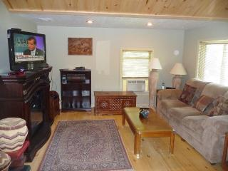 Newly Remodeled House, Sleeps 13, Dock 18' Boat - Alexandria Bay vacation rentals