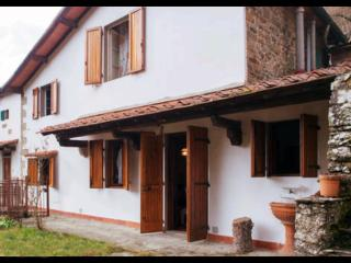Florentine hills.Beautiful & characteristic house. - Rufina vacation rentals