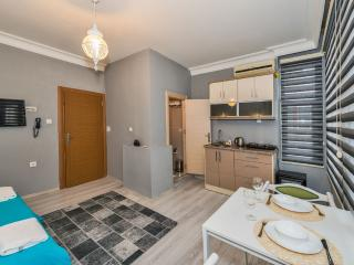 Otto Plus Suite - Istanbul Province vacation rentals