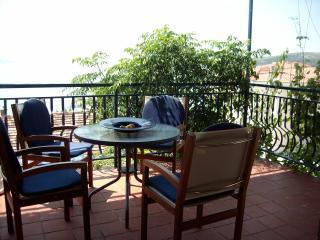 Apartment Amarena - Seget Vranjica vacation rentals