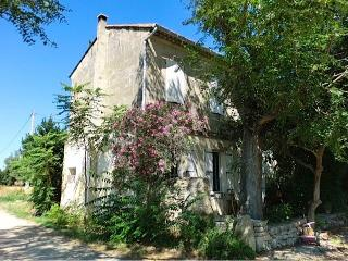 Wonderful home in Provence's Golden Triangle - Villeneuve-les-Avignon vacation rentals