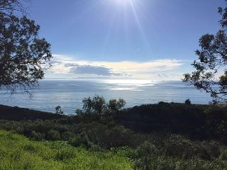 2BR Rincon Ridge, Ocean View Luxury with Private Tennis Court and Jacuzzi - Carpinteria vacation rentals