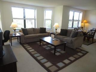 Lux 2BR in Post-War building - Somerville vacation rentals