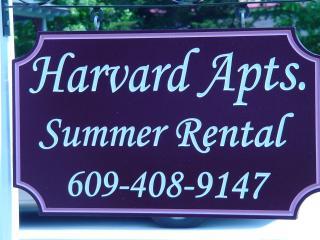 Apt #1 - 2 bedroom 1 bath sleeps 5 comfortably - Cape May vacation rentals