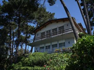 Villa surrounded by green woods, with a wonderful - Massarosa vacation rentals