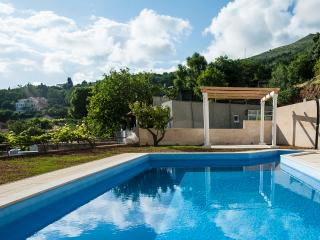 Spacious apartment with pool, Mlini - Mlini vacation rentals