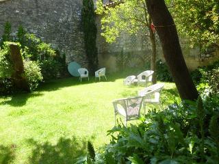 A little gem set in a village surrounded by vines - Saint-Hilaire-d'Ozilhan vacation rentals