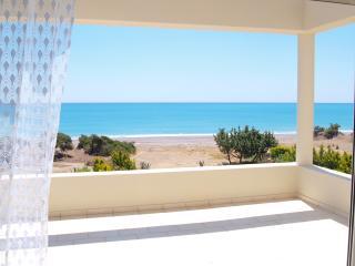 Aegean Villa By The Sea - Gennadi vacation rentals