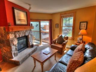 Keystone: 8401 Buffalo Lodge - Keystone vacation rentals