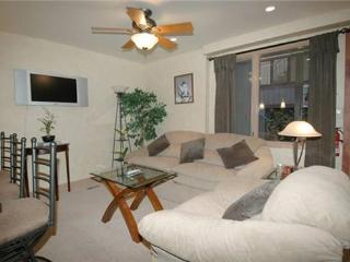 Fifth Avenue 14 - Aspen vacation rentals