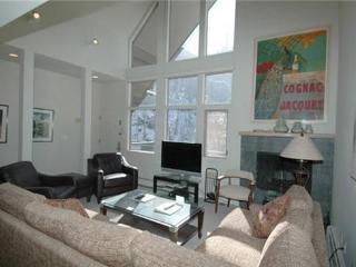 Fifth Avenue 303 - Aspen vacation rentals