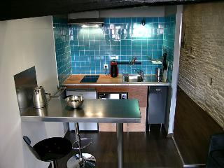Studio with terrace in city center - Toulouse vacation rentals
