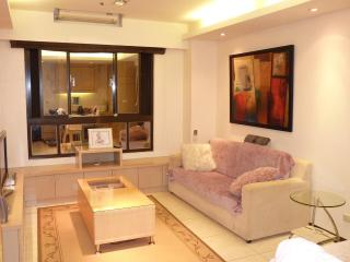 Modern 2B, Park, Riverside, 25 min to Airport - Taiwan vacation rentals