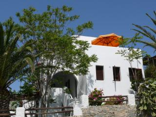 Modern, Family Friendly Villa with Garden - Agia Anna vacation rentals