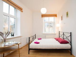 Charming 1 bedr. in center of Riga - Riga vacation rentals