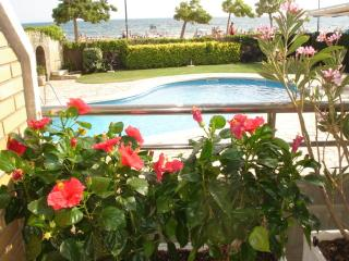 Beachline appartment with pool - Roses vacation rentals