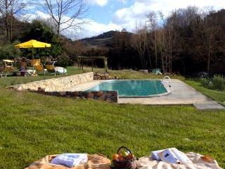 Molino di Amarrante in Chianti - Private Pool - Montaione vacation rentals