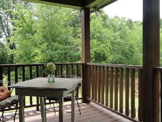 Country Getaway – Girlfriends Weekend - Canton vacation rentals