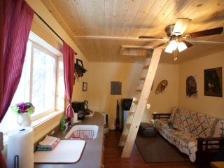 Alaska Wildlife Cabins and Hostel - Get the true feeling of Alaska - Enjoy Wildlife and the gorgeous Northern Lights - Alaska vacation rentals