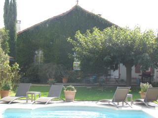 Charming village house in Saint Remy de Provence - Saint-Remy-de-Provence vacation rentals