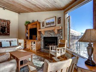 Tyra Summit Townhome #955 - Leadville vacation rentals