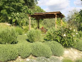 Antica Vacation Rentals, Tuscany - Pelago vacation rentals