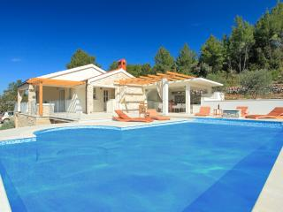 ***LAST MINUTE DISCOUNT***secluded villa with pool - Vela Luka vacation rentals