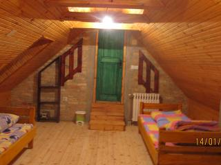 green room,4 beds,mini bar and shared bathroom - Vojvodina vacation rentals