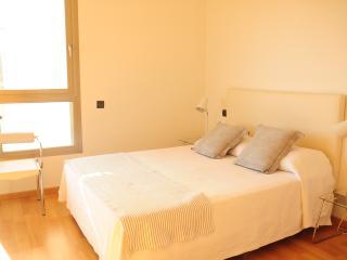 Casa Katia,luxury apartment PaseoMaritimo/Botafoch - Talamanca vacation rentals