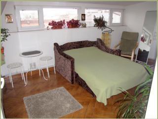 Private room near North Train Station - Romania vacation rentals