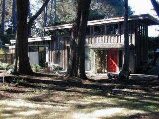 Chapman Point Cottage... a warm, comfortable cottage, a mile from Mendocino. - Mendocino vacation rentals