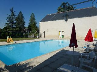 Lovely Loire Valley apartment with 2 bedrooms and views across a green garden and shared pool - Chisseaux vacation rentals