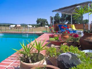 Gorgeous Portuguese cottage near Portalegre with pool, tennis, horses and stunning country views - Portalegre vacation rentals