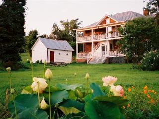 Blueberry Hill Farm in Historic Shenandoah Valley - Shenandoah Valley vacation rentals