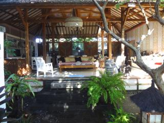 Tranquil Artist's Retreat in Sanur - Sanur vacation rentals