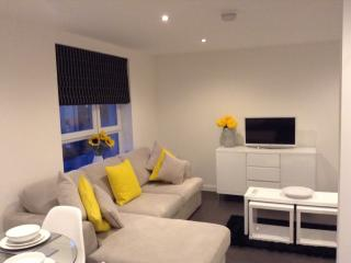 Mode Apartments - Urquhart Court - Aberdeen vacation rentals