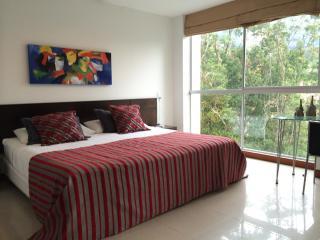 Poblado Studio Near Parque Lleras 0058 - Medellin vacation rentals