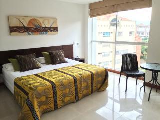 Poblado Studio Available Daily or Monthly 0065 - Medellin vacation rentals