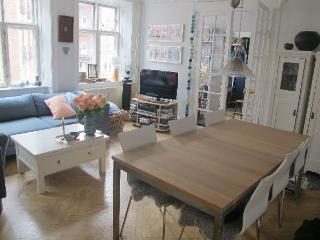 Gothersgade - Close To The Kings Square - 134 - Copenhagen vacation rentals