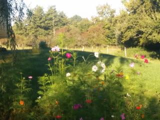 Idyllic mobile home in Haute-Vienne, Limousin, with 1 bedroom, terrace and scenic garden - Nouic vacation rentals