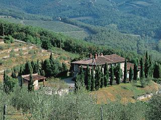 Imposing stone-built farmhouse 1km from the village of Radda in Chianti. SAL CMP - Chianti vacation rentals