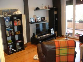Apartment 5 places 5 minutes beach WI FI - San Sebastian - Donostia vacation rentals