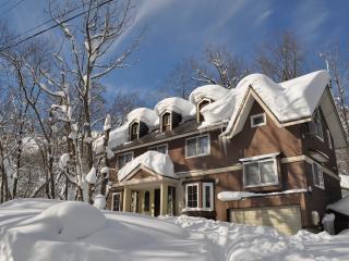 Hakuba Echo Villa - Self Contained Chalet - Nagano Prefecture vacation rentals
