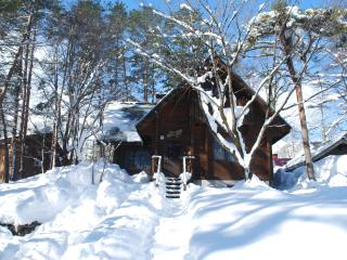 Yamaga Cabin Hakuba - Hakuba-mura vacation rentals