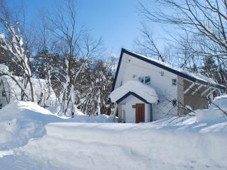 Eagle House Hakuba - Hakuba-mura vacation rentals