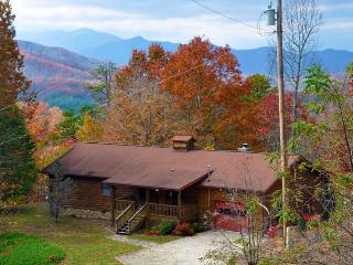 Big Bear Retreat - Nature Surrounds This Centrally Located Log Cabin with Large Yard and Picnic Table, Screened Porch, View, Wi- - Smoky Mountains vacation rentals
