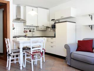 IL RICCIO (Soave) - Soave vacation rentals